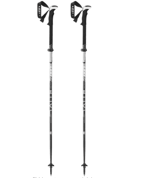 LEKI Micro Flash Pole Pair