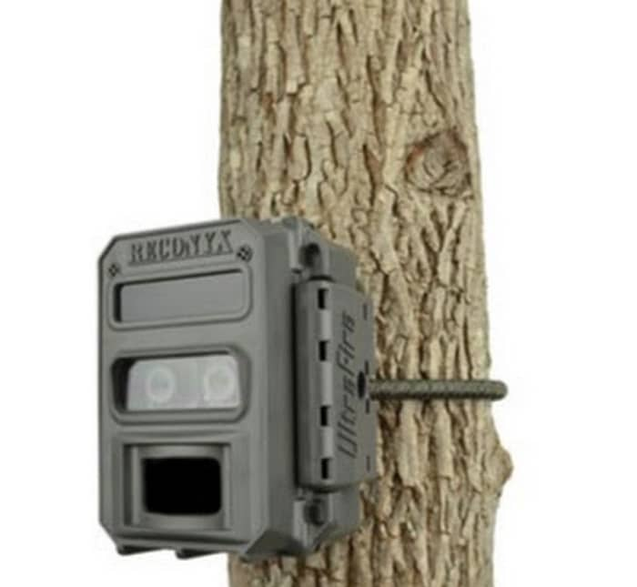 trail cam pro